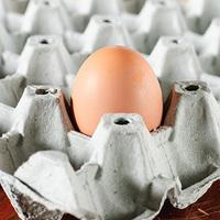 おいしい、簡単卵料理!どんなものがある?