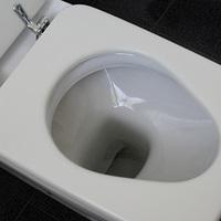 他人の家でのトイレって抵抗はない?